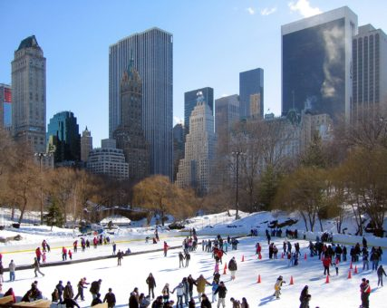 P.S. 183 Wollman Rink outing