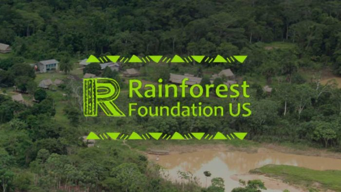 3rd Grade: Book and bake sale for the Rainforest Foundation US